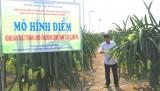 Sản xuất nông nghiệp ứng dụng công nghệ cao tạo chuyển biến tích cực