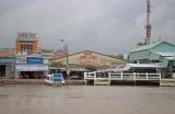 Cà Mau: Ban bố tình huống khẩn cấp sạt lở khu vực bờ biển Đông