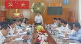 Ban Nội chính Trung ương khảo sát các khu công nghiệp tại huyện Cần Giuộc
