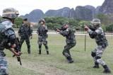 Các nước ADMM+ kết thúc diễn tập thực địa chống khủng bố