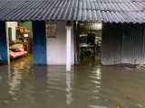 Phường 5, TP.Tân An: Triều cường lên cao, nước tràn vào nhà dân