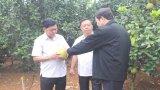 Đoàn công tác Long An học tập kinh nghiệm mô hình nông nghiệp công nghệ cao tại tỉnh Sơn La
