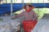Tân Trụ: Giảm tỷ lệ hộ nghèo còn 2,67%