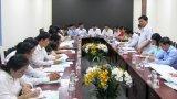 Long An tổng rà soát công tác chuẩn bị hoạt động mừng Đảng, mừng Xuân Canh Tý 2020