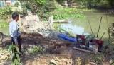 Tân Trụ: Nỗ lực chống hạn, xâm nhập mặn cho vụ lúa Đông Xuân