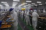 Đức Hòa: Kinh tế công nghiệp có vai trò quan trọng trong sự phát triển của địa phương