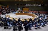 Hội đồng Bảo an Liên hợp quốc hủy các cuộc họp vì dịch COVID-19