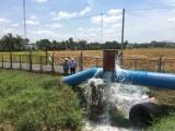 Nhà máy nước Nhị Thành xả hơn 500.000m3 nước thô cứu lúa