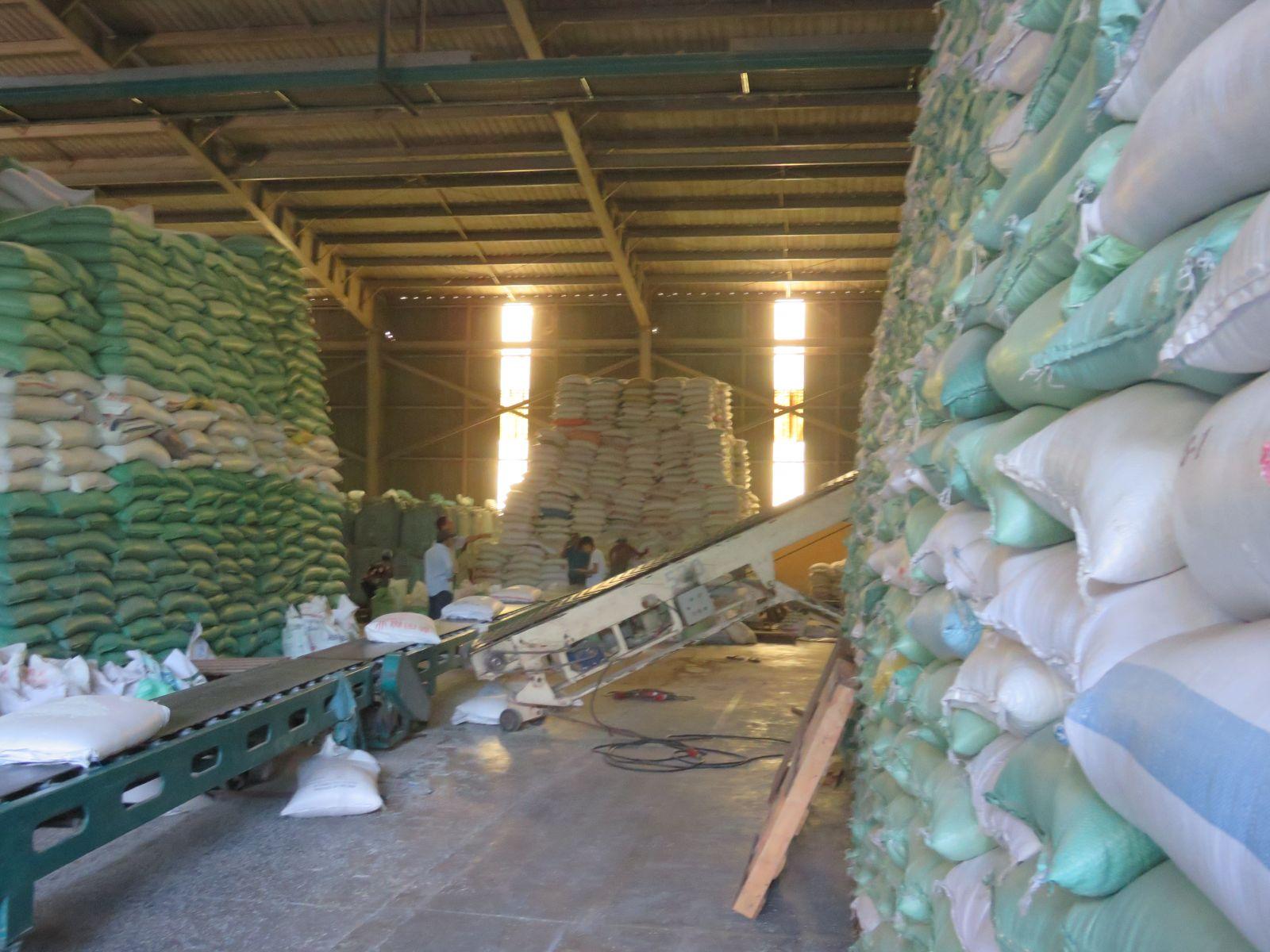 Hiện nay giá xuất khẩu gạo đang ở mức cao