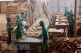 Bộ Công Thương sẽ đẩy nhanh tái cơ cấu trong sản xuất công nghiệp