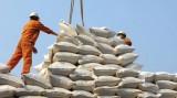 Sẽ xử lý thương nhân xuất khẩu gạo không trình đúng, đủ số lượng như khai báo