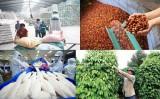 Nông, lâm, thủy sản xuất siêu 2,8 tỷ USD trong 4 tháng đầu năm