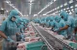 Việt Nam - Hoa Kỳ thúc đẩy hợp tác tái khởi động nền kinh tế