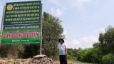 'Rừng thuốc' Đồng Tháp MườI - Bảo tồn đi đôi phát triển bền vững