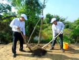 Trồng 660 cây xanh hưởng ứng ngày Môi trường thế giới