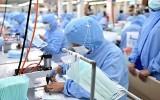 Xuất khẩu gạo và khẩu trang y tế của Việt Nam tăng vọt