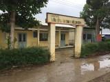 Bắt tạm giam thầy giáo dâm ô học sinh tại Kiên Giang