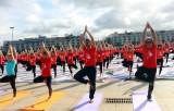 Ngày Quốc tế Yoga lần thứ 6 thu hút gần 3.000 người tham gia