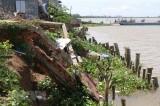 Trà Vinh công bố tình trạng khẩn cấp sạt lở đoạn đê bao khu dân cư
