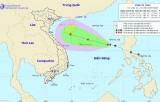 Chủ động ứng phó với áp thấp có thể mạnh lên thành áp thấp nhiệt đới