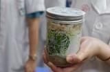 24 người ở Hà Nội có triệu chứng bệnh vì ăn pate Minh Chay