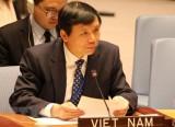 Triển khai hiệu quả Nghị quyết HĐBA về thanh niên, hòa bình, an ninh