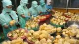Nâng cao kim ngạch xuất nhập khẩu nông sản Việt Nam – Hoa Kỳ