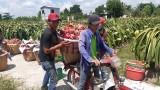 Xã Hòa Phú hoàn thành nông thôn mới nâng cao
