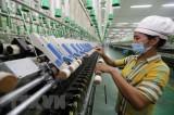 Chuyên gia: Tăng trưởng kinh tế Việt Nam có thể đạt từ 2-3%