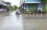Cần sớm đầu tư hệ thống thoát nước đê bao khu B thị trấn Tân Hưng