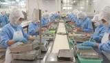 EVFTA: Tận dụng ưu đãi gia tăng xuất khẩu vào thị trường EU