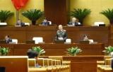 Kỳ họp thứ 10, Quốc hội khóa XIV: Cho ý kiến hai dự thảo Luật
