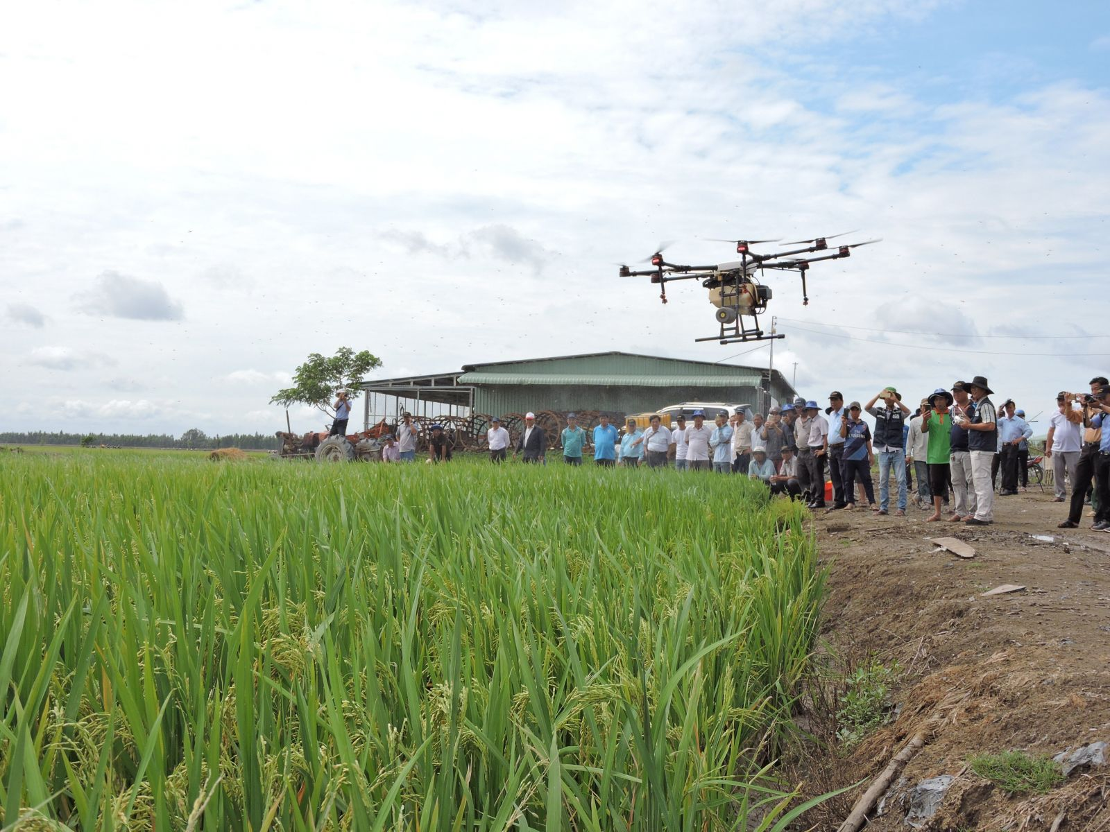 Farmers of Tan Hung district implement mechanization into the field