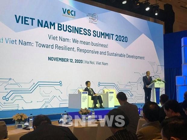 At the Vietnam Business Summit 2020 (Photo: VNA)
