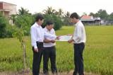 Đường tỉnh 827E: Trục động lực kết nối vùng duyên hải miền Tây Nam bộ và TP.Hồ Chí Minh