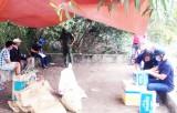Công an huyện Cần Giuộc triệt xóa tụ điểm đá gà