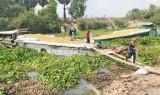 Hợp tác xã Dịch vụ Thương mại Nông nghiệp Cây Trôm đồng lòng để cùng phát triển