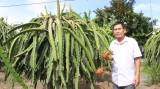 Hiệu quả từ mạnh dạn chuyển đổi giống cây trồng