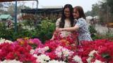 Rực rỡ Chợ hoa xuân