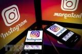 Facebook gỡ bỏ hàng trăm tài khoản Instagram bị đánh cắp thông tin