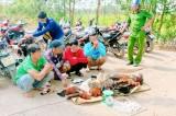 Triệt phá tụ điểm đá gà tại Tân Thạnh