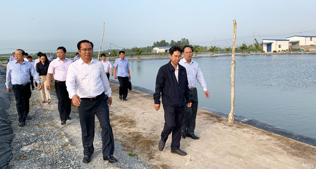 Secretary of the Provincial Party Committee - Nguyen Van Duoc (top left), together with the delegation visits the industrial pangasius farming area of Vinh Hoan Joint Stock Company