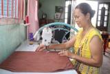 Chi hội trưởng phụ nữ tiêu biểu xây dựng nông thôn mới