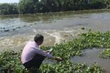 Long An: Dự báo độ mặn trên các sông rạch xuất hiện cao nhất vào ngày 30/3