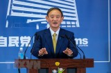 Thủ tướng Nhật Bản để ngỏ khả năng tổ chức bầu cử sớm