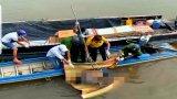 Phát hiện thi thể nam thanh niên trên sông Vàm Cỏ Tây