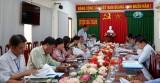 HĐND tỉnh Long An giám sát kết quả xây dựng nông thôn mới tại huyện Châu Thành
