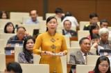 Đoàn Đại biểu Quốc hội tỉnh Long An: Trách nhiệm, hành động vì lợi ích nhân dân