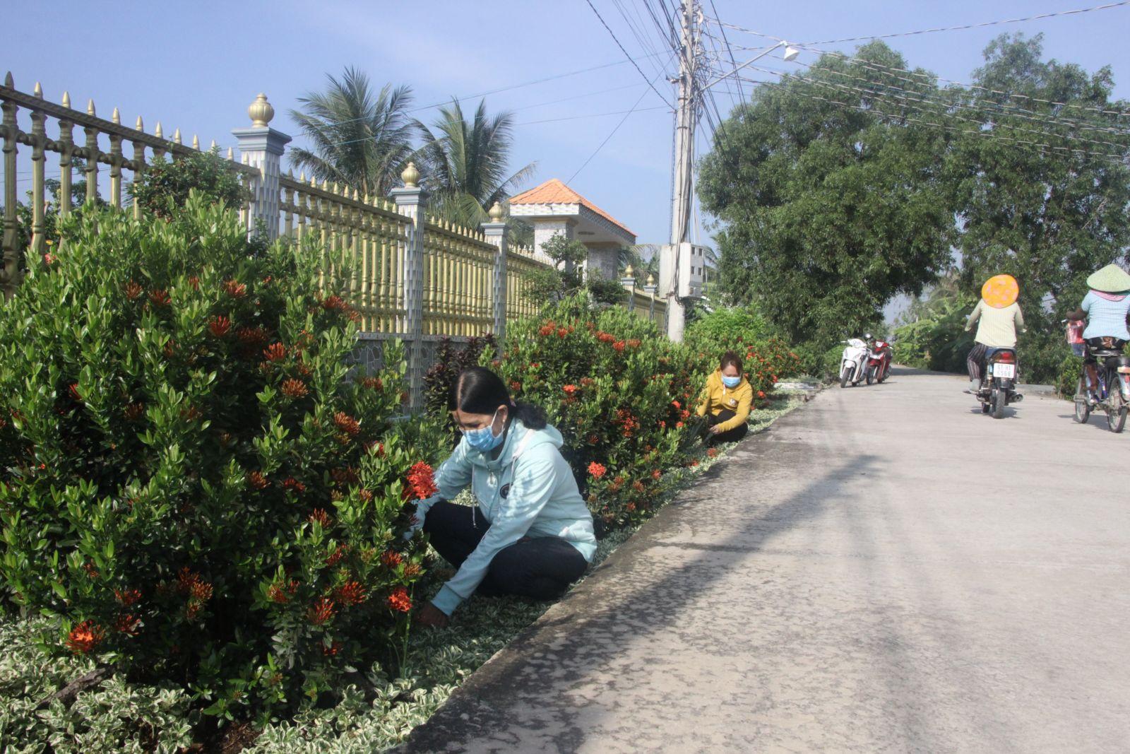Tuyến đường hoa do Hội Liên hiệp Phụ nữ Việt Nam xã An Lục Long chăm sóc
