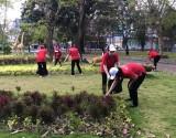 Phụ nữ chung tay xây dựng môi trường xanh, sạch, đẹp